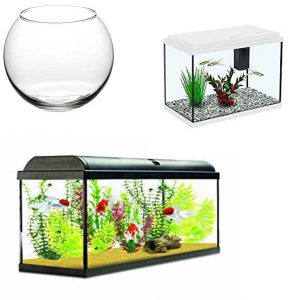Fish Tanks Aquariums Bowls
