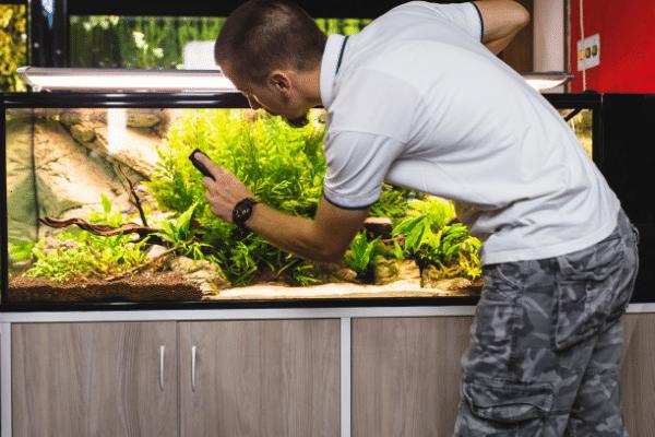 aquarium maintenance tool tips and tricks keeping fish