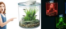 Marina 360 Aquarium 10 Litre Fish Tank with LED Lighting: Product Review